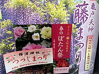 Img_0753